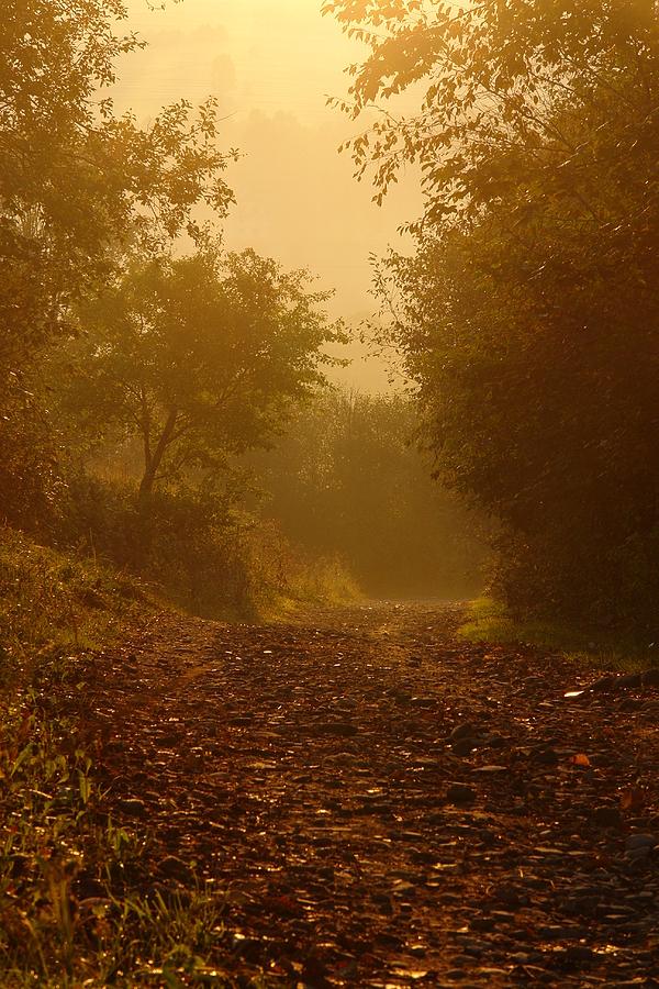 http://www.polskiekrajobrazy.pl/images/stories/big/81371DSC.JPG