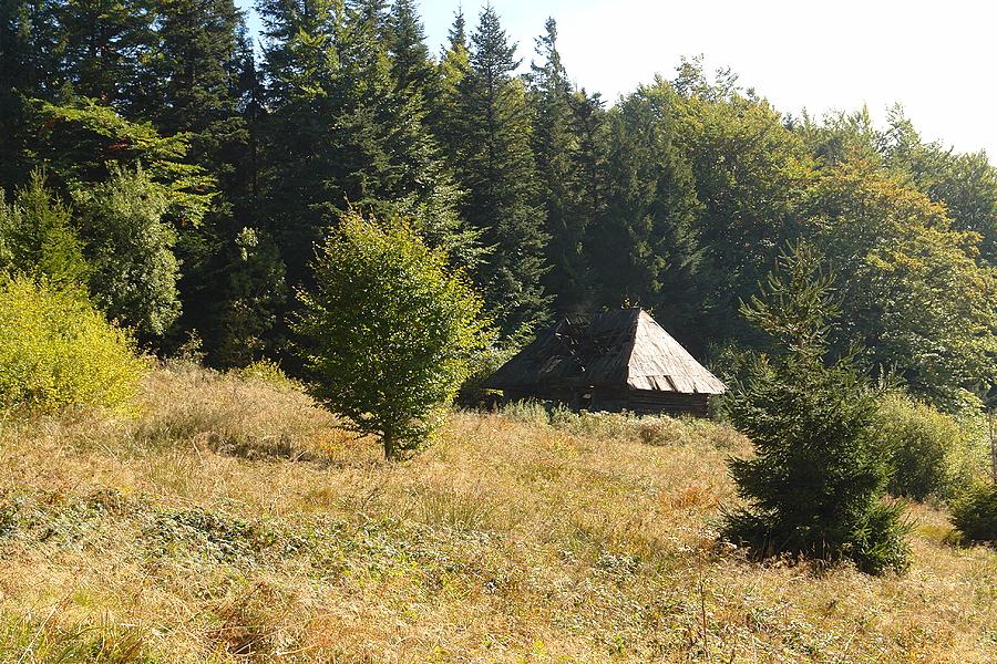 http://www.polskiekrajobrazy.pl/images/stories/big/81701DSC.JPG