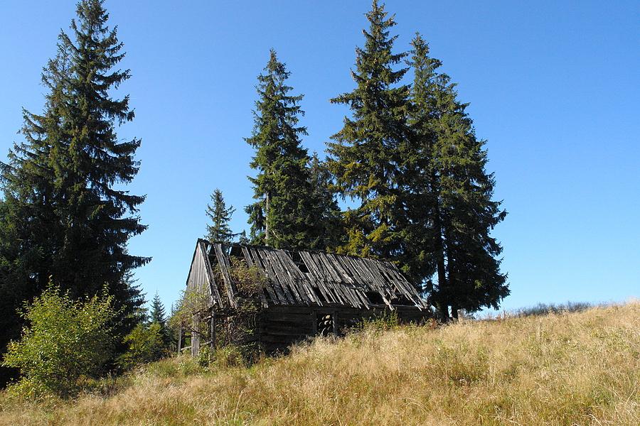 http://www.polskiekrajobrazy.pl/images/stories/big/81843DSC.JPG
