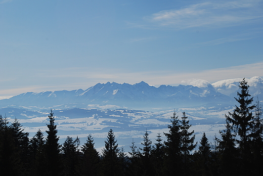 Widok na Tatry. Gorce